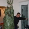 Da kommt er - der Baum. (und die Tanne) :)